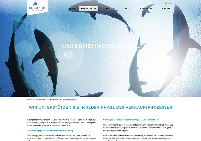 webdesign anwaelte Maxvorstadt