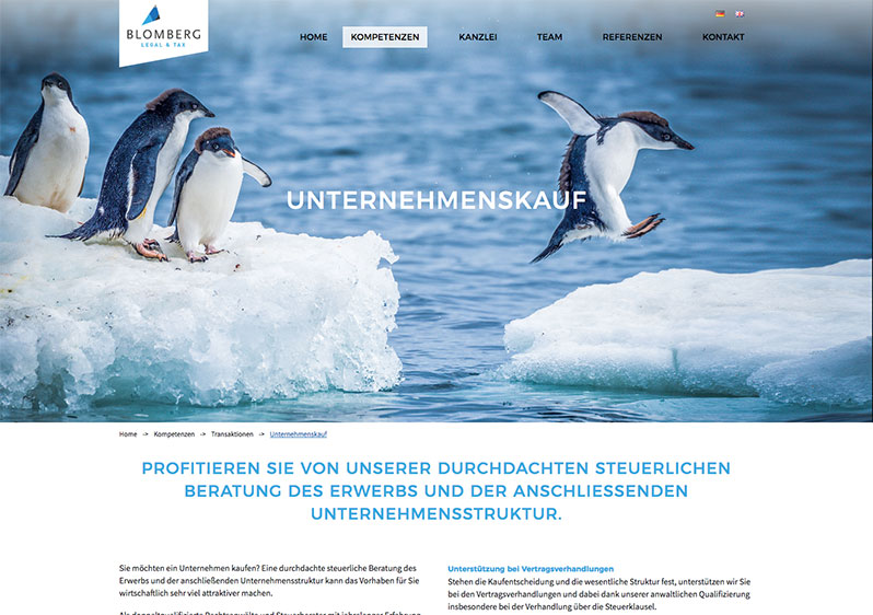 Webseite Rechtsanwalt Design